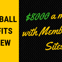 SnowBall Profits Review