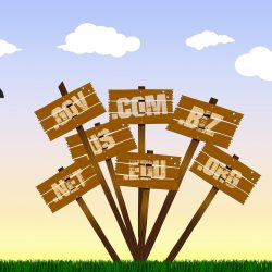 What You Should Know About Domain Names